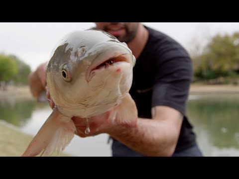 """Desert Gold"" - Find Your Water Episode 3 - Redington Fly Fishing"