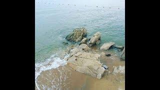 Бэйдэйхэ. Ловим волны. Океанариум. Сафарипарк.