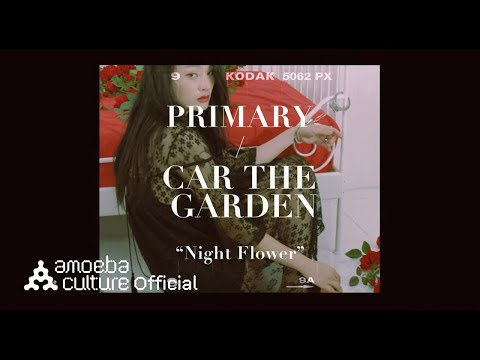 프라이머리(Primary) - 밤꽃 (Night Flower) (feat. 카더가든)_꽃(Flower) ver. Video clip