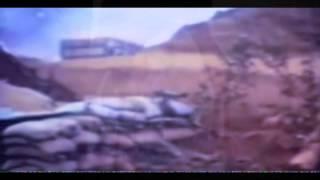 Biosphere - Antennaria ( Fan Made Video ~~~oM )