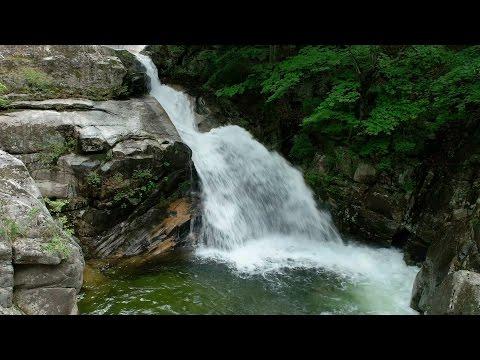 (강원도여행) 강릉 오대산 소금강계곡