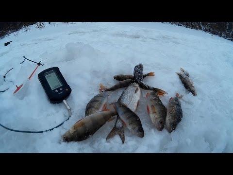 Как выбрать рыбопоисковый эхолот?