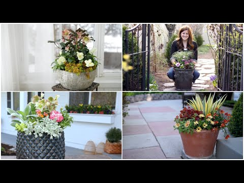 4 Early Spring Container Ideas! 🌿