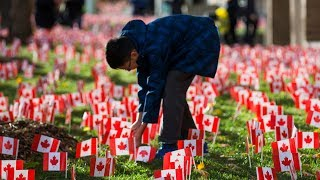 HONOURING CANADIAN VETERANS: Volunteers place 47,500 flags at Sunnybrook