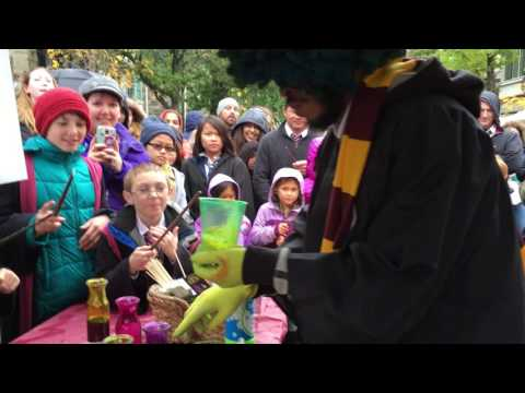 Harry Potter Festival, Chestnut Hill 2016 - Magical Potions Show!
