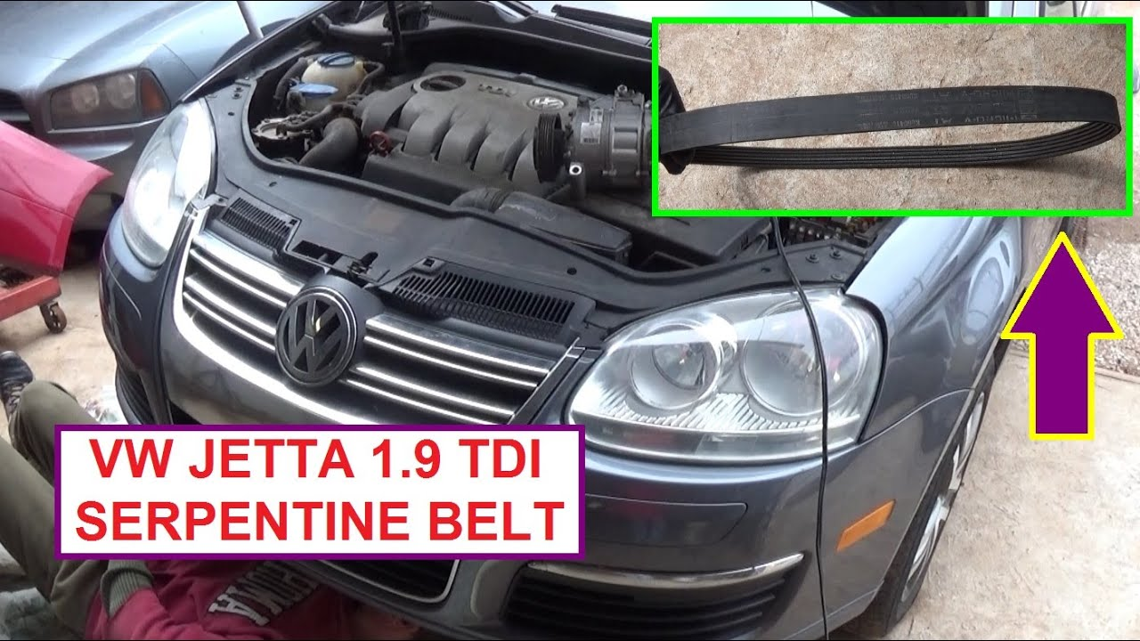 VW JETTA Golf Bora MK5 MK4 TDI 19 PD Serpentine Belt