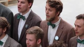 Høystemt  -  Olav Trygvason