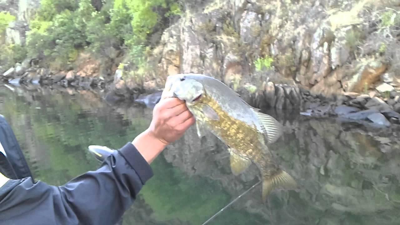 Fishing lake tulloch ca youtube for Lake tulloch fishing