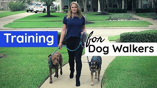 Training You NEED to be a Dog Walker