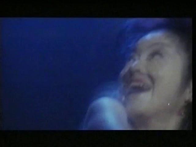 Double Cross (BRD) german VHS Trailer (VPS) Itsuka giragirasuruhi (JAP) Triple Cross (INT)