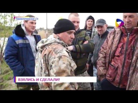 в Нововеличковской станичники возвращают рыбу в реку Понуру