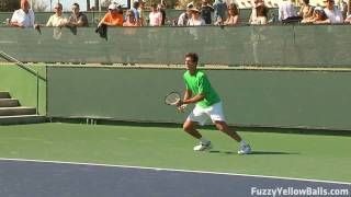 Juan Martin del Potro plays two points in HD