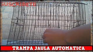 Trampa Automatica Para Aves Con Jaula Automatica y Casera / YMX SUPERVIVENCIA