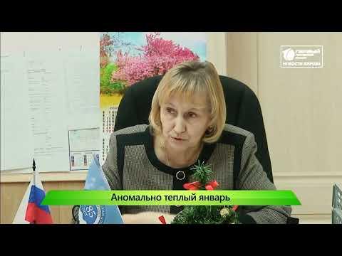 Январское потепление Новости