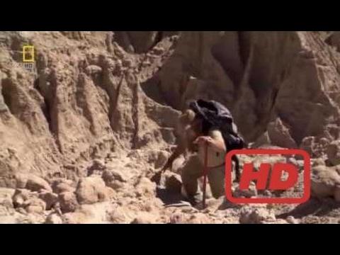Popular Videos - Prehistory & Documentary Movies hd :  Popular Videos - Prehistory & Documentary Mo