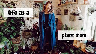 Best Indoor Plants + how to care for them | My plant collection 🌿