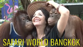 Download Video Safari World - Bangkok MP3 3GP MP4
