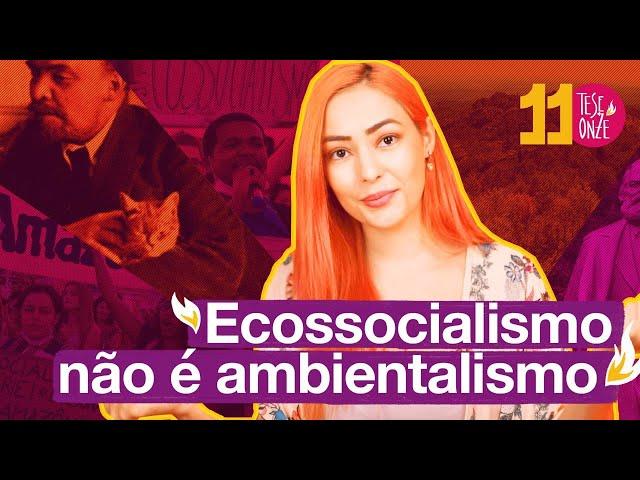 Ecossocialismo é mais que ambientalismo | 080