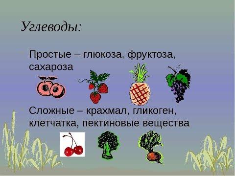Углеводы, моносахариды, полисахариды, мальтоза, глюкоза