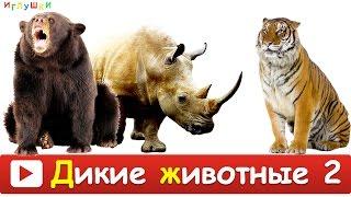 [ ДИКИЕ ЖИВОТНЫЕ для ДЕТЕЙ 2 ] Развивающие ВИДЕО про животных для детей в высоком качестве(Во второй серии ваш малыш познакомиться с дикими животными такими как: лев, пума, кенгуру, верблюд, зебра,..., 2016-02-25T16:38:46.000Z)