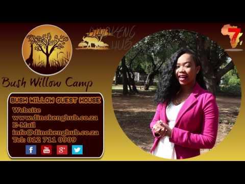 Bush Willow Guest House - Dinokeng Hub