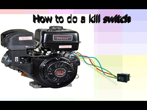 How to install a kill switch on a Predator Motor/ Go kart