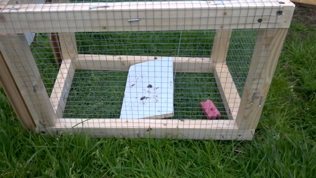 Pi ge cage rat youtube - Piege a souris fait maison ...
