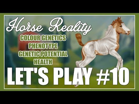 Colour Genetics & More - Horse Reality (Let's Play #10)