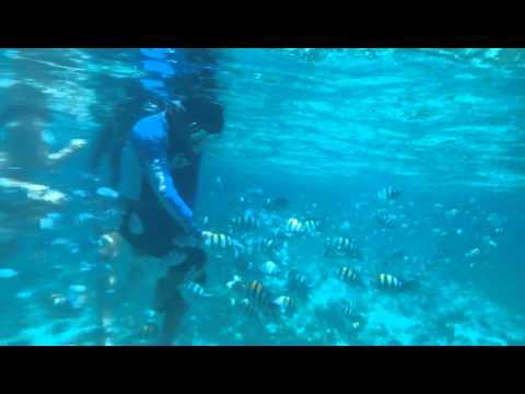 San Vicente Marine Sanctuary Olango Reef