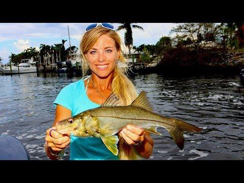 Catching NEW SPECIES + Personal Best CATFISH Inshore Fishing!
