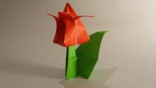 Origami Tulip (hd)
