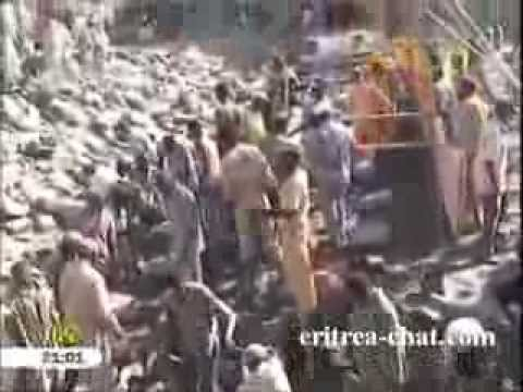 Eritrean Tigrinya News - 8 November 2013 by Eri-TV