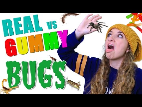 Thumbnail: Gummy Food vs Real Food BUG EATING CHALLENGE 🕷️🤢 | Real Bugs or Gummy Worms Roulette