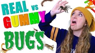 Gummy Food vs Real Food BUG CHALLENGE 🕷️🤢 | Real Bugs or Gummy Worms Roulette