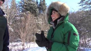 Dog Sledding | Outdoor Journal | Season 12