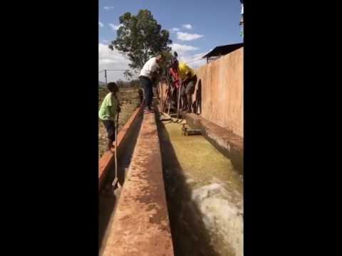 Ethiopia trip Day 3 ( Chelchele washing station ) محطة غسيل تشيل شيلي