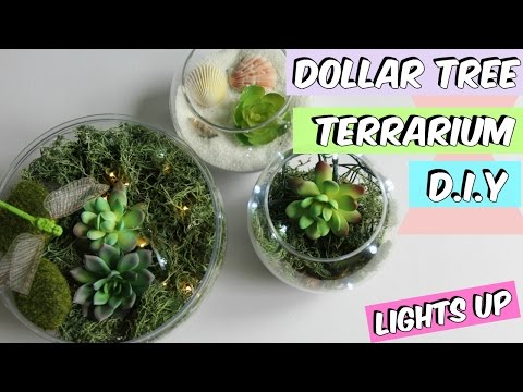 Light Up Terrarium Kit For Kids With Led By Mini Explorer Youtube