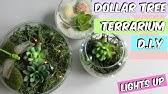 Light Up Terrarium Kit For Kids With Led By Mini Explorer Youtube