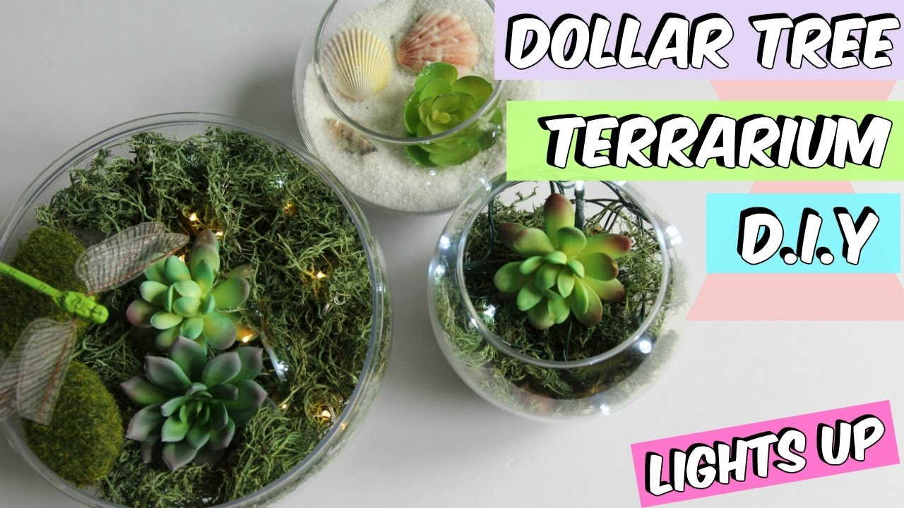 Dollar Tree Terrarium D I Y Tutorial Youtube