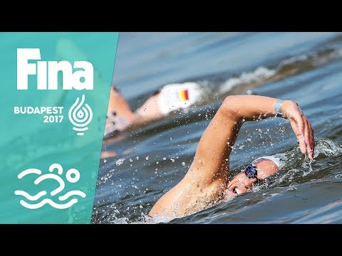 The world's bravest open water Swimmers at #FINABudapest2017