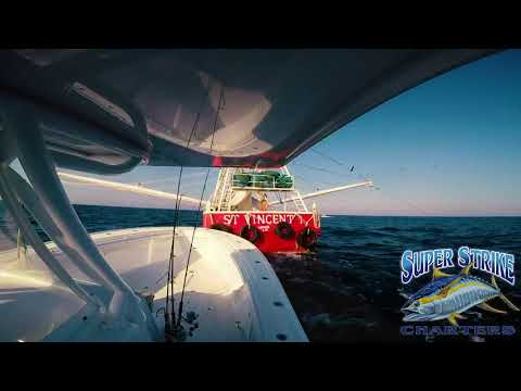 Yellowfin Tuna Fishing In Venice, LA