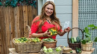 How to Grow Gourmet Summer Squash From Seed