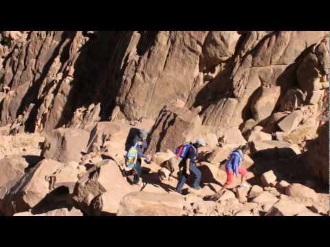Monte Sinai 2286 M.