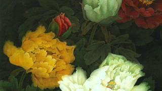 Handel -  Alessandro -  Pregi son d