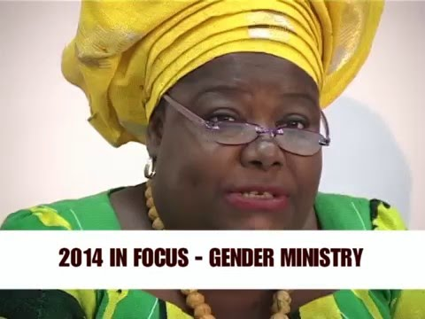 Ministry of Gender, Children and Social Protection - 2014 in Focus.