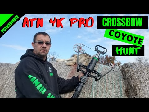 cross bow hunting coyotes with atn 4k pro