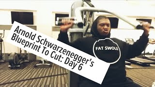 ARNOLD BLUEPRINT TO CUT | SHOULDERS ROUTINE | 4AM FITNESS | FAT TO FAB