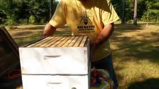 Easy Diy Homemade Bee-vac