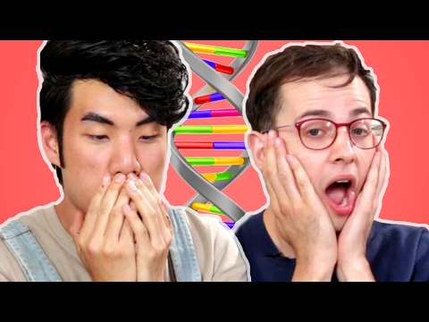 Download Youtube: The Try Guys Take An Ancestry DNA Test