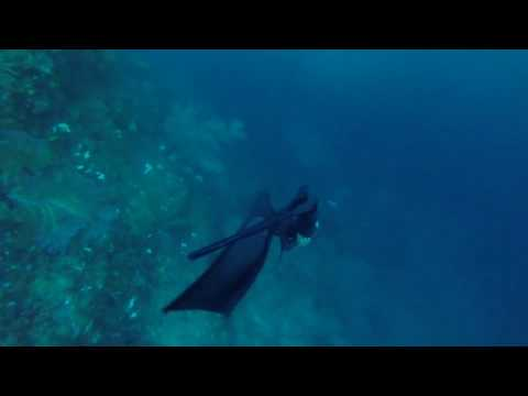 Miguel Lozano - Down current freediving